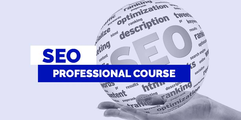 SEO Professional: What Capabilities They Have to Optimize Your Site?